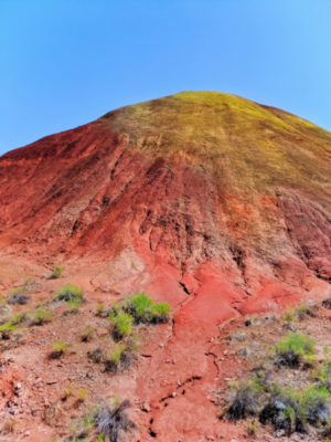 Red Scar Knot at Painted Hills John Day Fossile Beds NM Oregon 1b