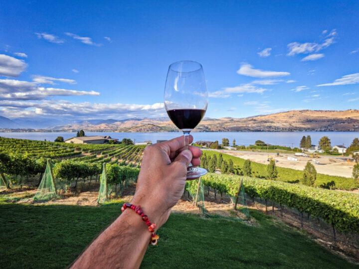 Red Wine Tasting in Vineyard at Nefarious Cellars Lake Chelan Washington 1