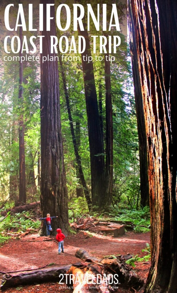 The California Redwoods are one of the most iconic sights to see on a California coast road trip. Hiking through epic trees is the perfect addition to a drive down the coast. #roadtrip #california #redwoods