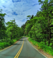 Road into Cape Disappointment State Park Ilwaco Washington 1