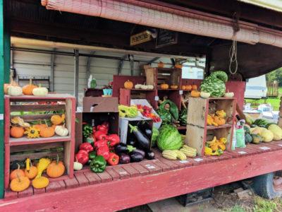 Roadside-farmers-market-stand-Rochester-New-York-1-400x300.jpg
