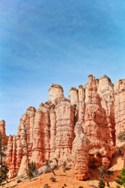 Sandstone hoodoos at Mossy Cave trail Bryce Canyon National Park Utah 2