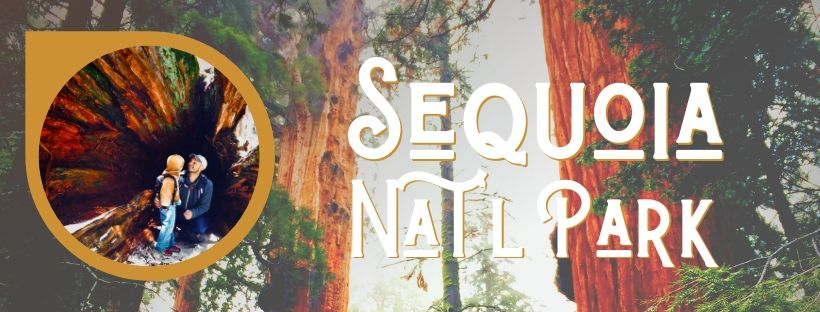 Sequoia National Park with kids is one of the most enjoyable and unique National Parks for hiking on the West Coast. Epic forests, petroglyphs and colorful trees make it an unforgettable destination. #SequoiaNationalPark #California #nationalpark #hiking