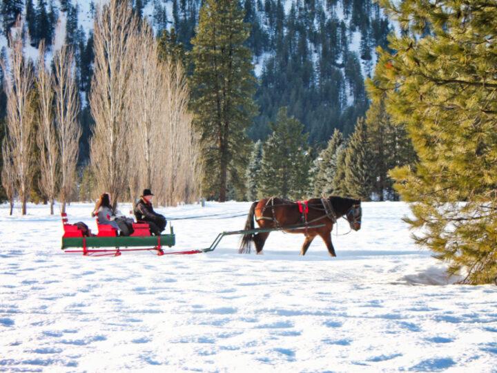 Sleigh Ride in Snow in Leavenworth WA 6