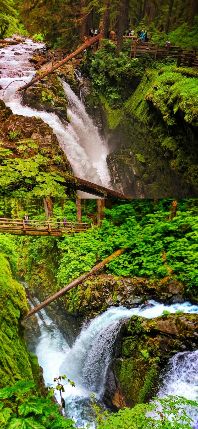 Sol Duc Falls on Olympic Peninsula Things to Do