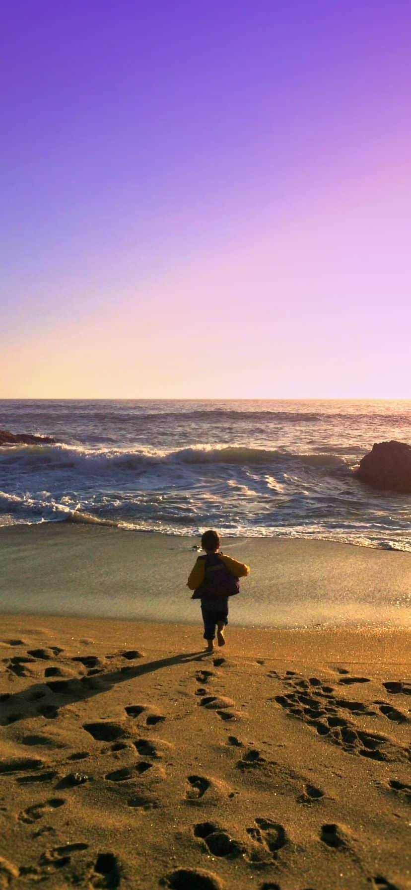 Sonoma County Beach California Coast Road Trip