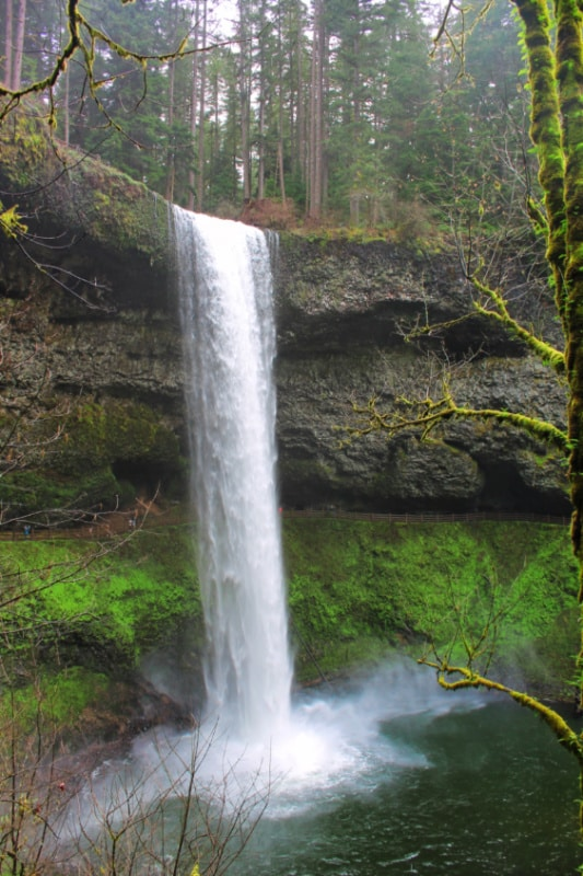 South Falls Silver Falls State Park Oregon 4