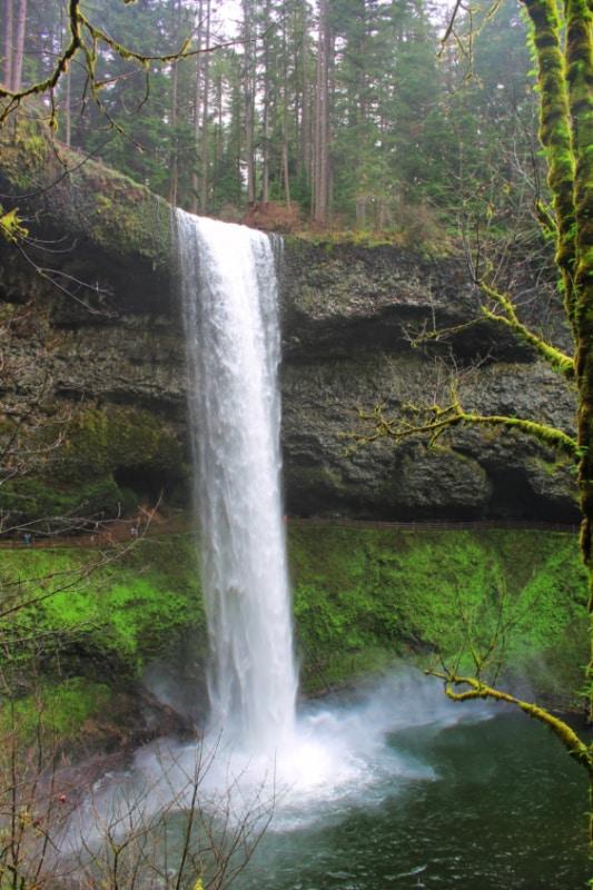 South Falls Silver Falls State Park Oregon 4