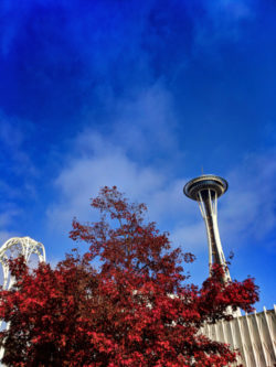 Space Needle with fall colors from Pacific Science Center Seattle 1