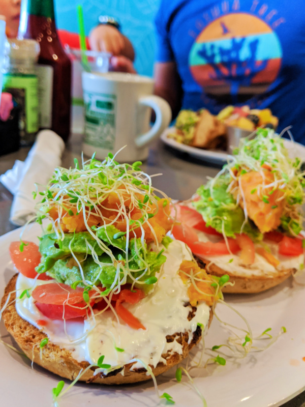 Sweet Potato Breakfast Bagel at Manatee Cafe Saint Augustine FL 1