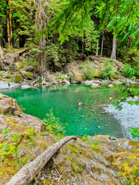 Swimming Hole at Staircase Rapids Hiking Olympic National Park 2019 1