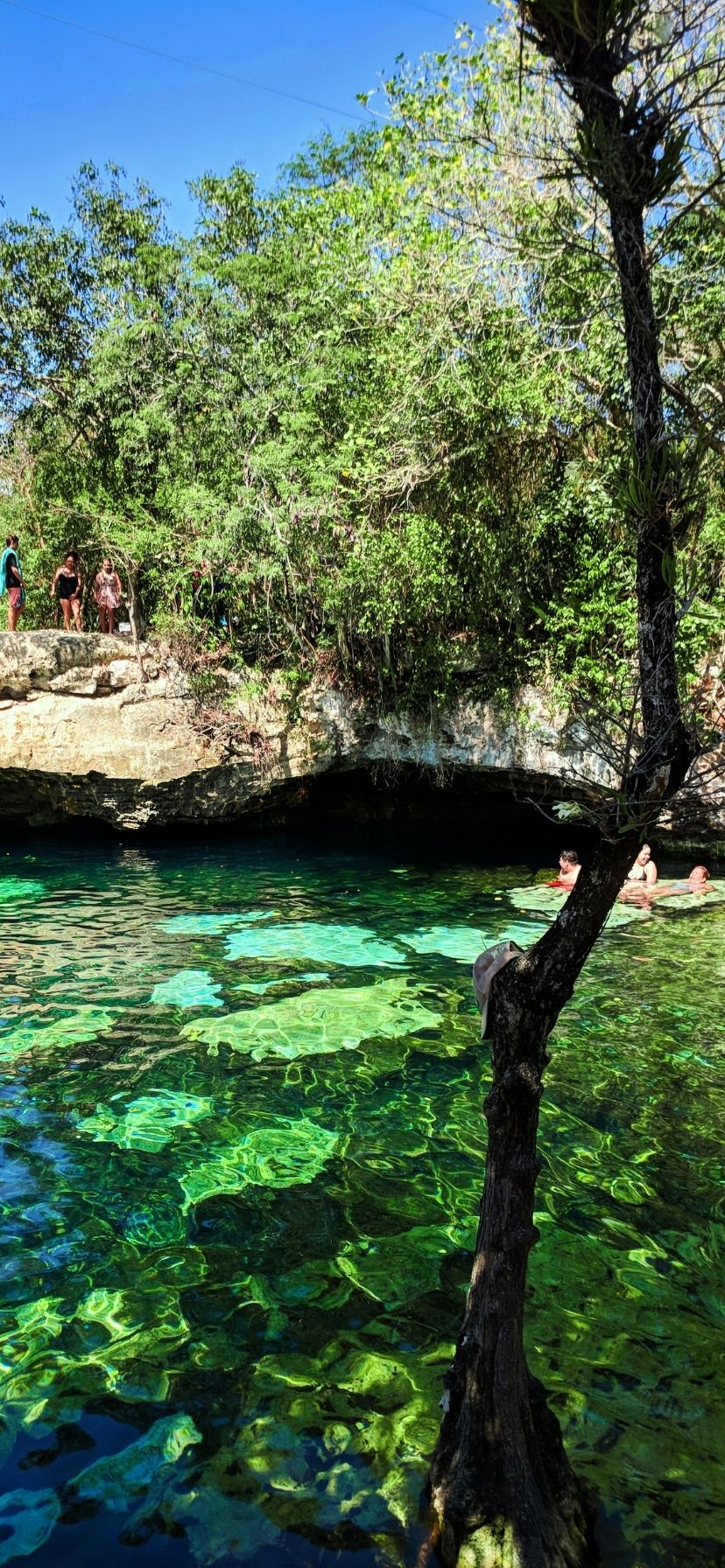The Cenotes near Cancun are amazing and really easy to add to a beach vacation. Cenotes are even easy to visit as a cruise excursion from a Caribbean Mexico port of call or Yucatan road trip.