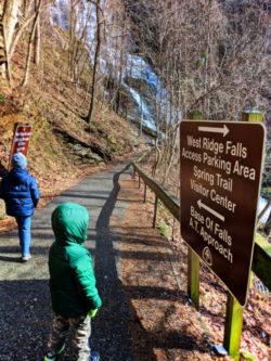 Taylor Family at Amicalola Falls State Park Georgia 3