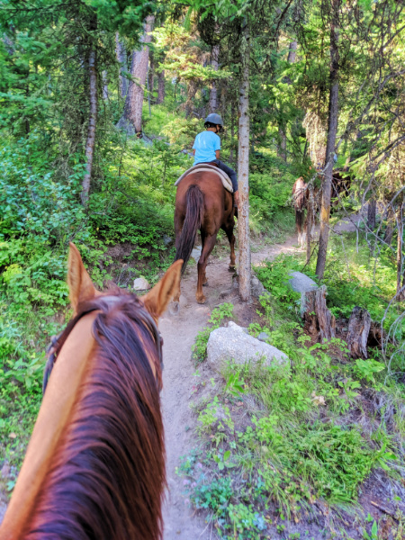 Taylor Family at Lone Mountain Ranch Big Sky Montana 11