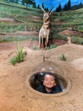 Taylor-Family-at-Visitor-Center-at-Bryce-Canyon-National-Park-Utah-3-169x225.jpg