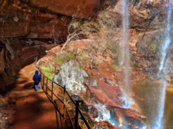Taylor Family behind Waterfalls at Lower Emerald Pools Zion National Park Utah 1