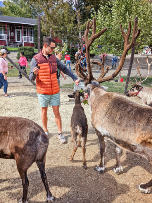 Taylor Family feeding reindeer at Reindeer Farm Leavenworth Washington 3