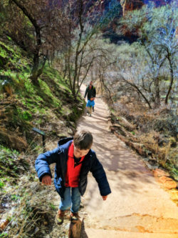 Taylor Family hiking Weeping Wall trail Zion National Park Utah 3