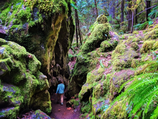 Taylor Family hiking at Fall Creek Falls Umpqua National Forest Oregon 10