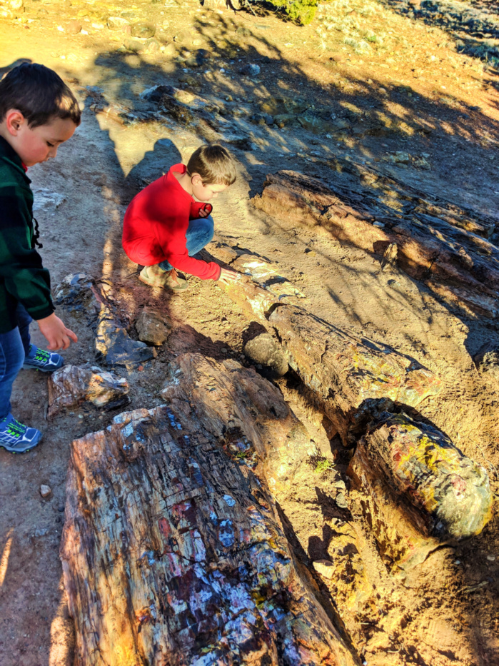 Taylor Family hiking at Petrified Forest State Park Escalante Utah 2
