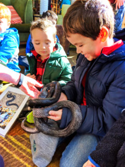 Taylor Family holding black rat snake at Amicalola Falls State Park Georgia 3