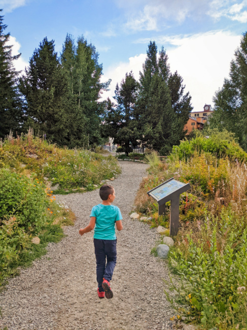 Taylor Family in Alpine Garden in Historic Breckenridge Colorado 1