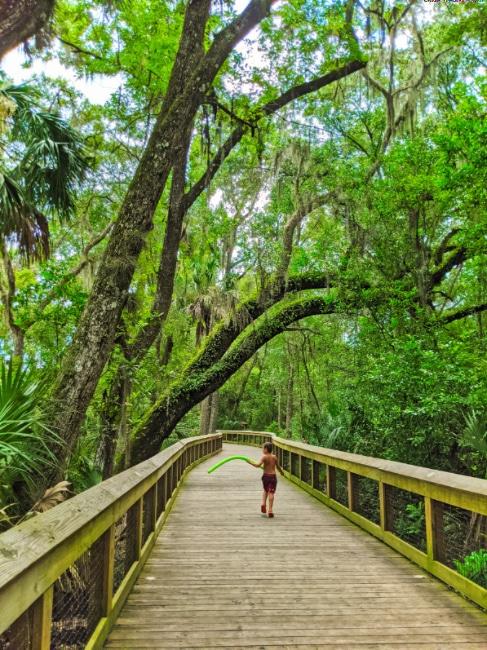 Taylor Family on Boardwalk at Blue Spring State Park Orange City Florida 2020 3