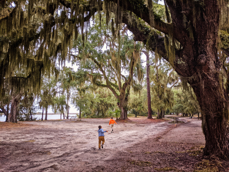 Taylor Family with Live Oaks and Moss at Park on St Simons Island Golden Isles Georgia 1