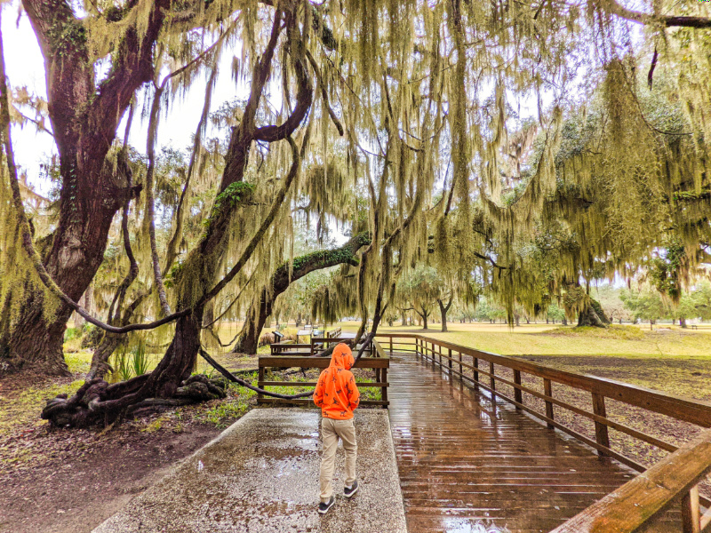 Taylor Family with Spanish Moss at Fort Frederica National Monument St Simons Island Georgia 1