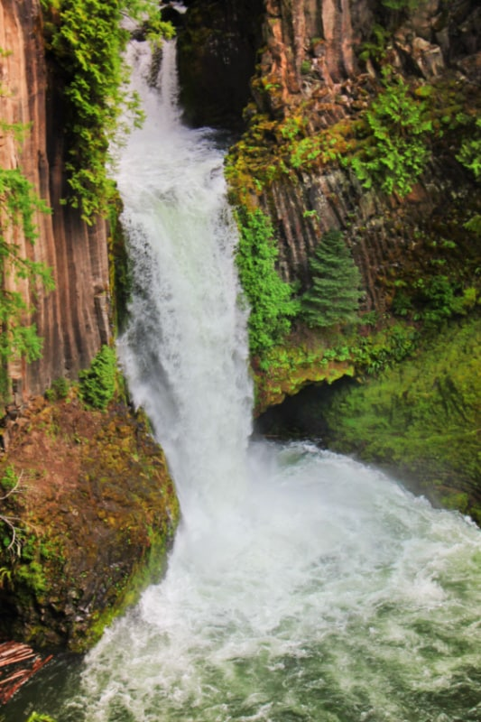 Tokatee Falls Umpqua National Forest Oregon 1