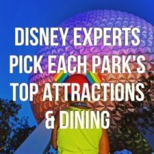 Top Attractions and Dining in Disney World Podcast (1)