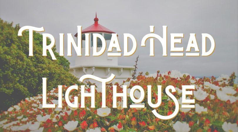 Trinidad Head Lighthouse Landing