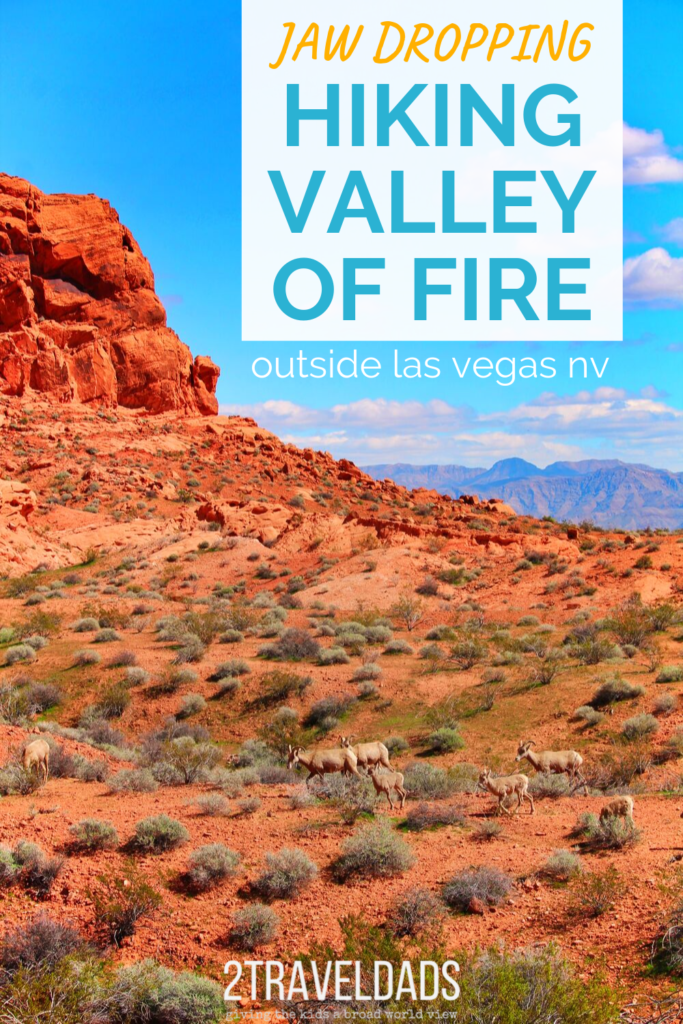 Valley of Fire with kids is a easy Las Vegas day trip. The best of Nevada nature, geology and history in one stop. Kid-friendly hiking and nature outside of Vegas. #nature #lasvegas #hiking