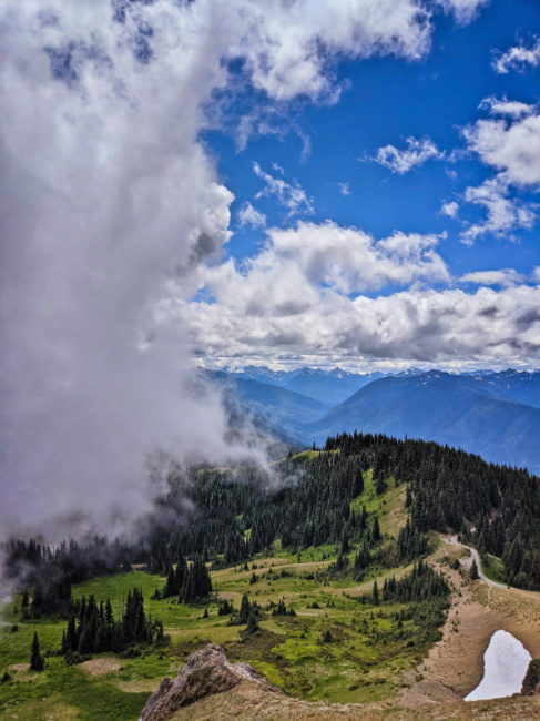 View from Hurricane Hill Trail Hurricane Ridge Olympic National Park Washington 6