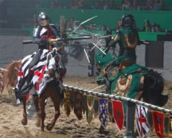 Visit Buena Park Medieval Times 2