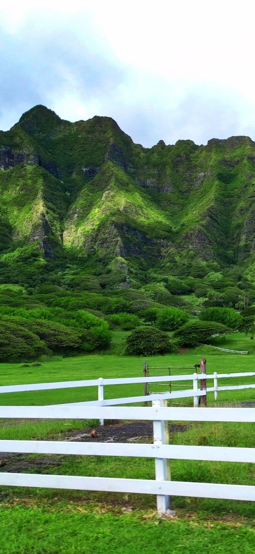 Green mountains at Kualoa Ranch, Oahu North Shore