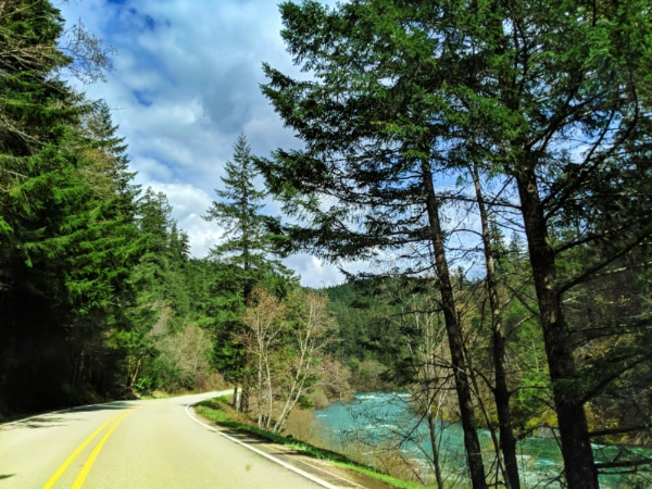 Winding Road on Tundering Waters Route Umpqua National Forest 1