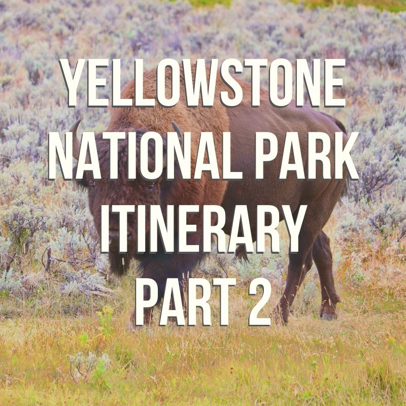 Two days' worth of itineraries for exploring the best sights of Yellowstone National Park: part 2.  In this episode we cover two days  of traveling through Yellowstone. These two road trip routes go through the northwest corner of the park, stopping at Mammoth Hot Springs, Tower Falls, the Lamar Valley, and our best wildlife viewing tips.